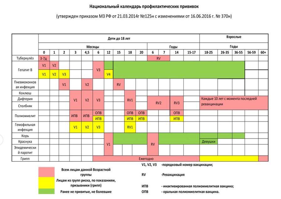 график прививок манту