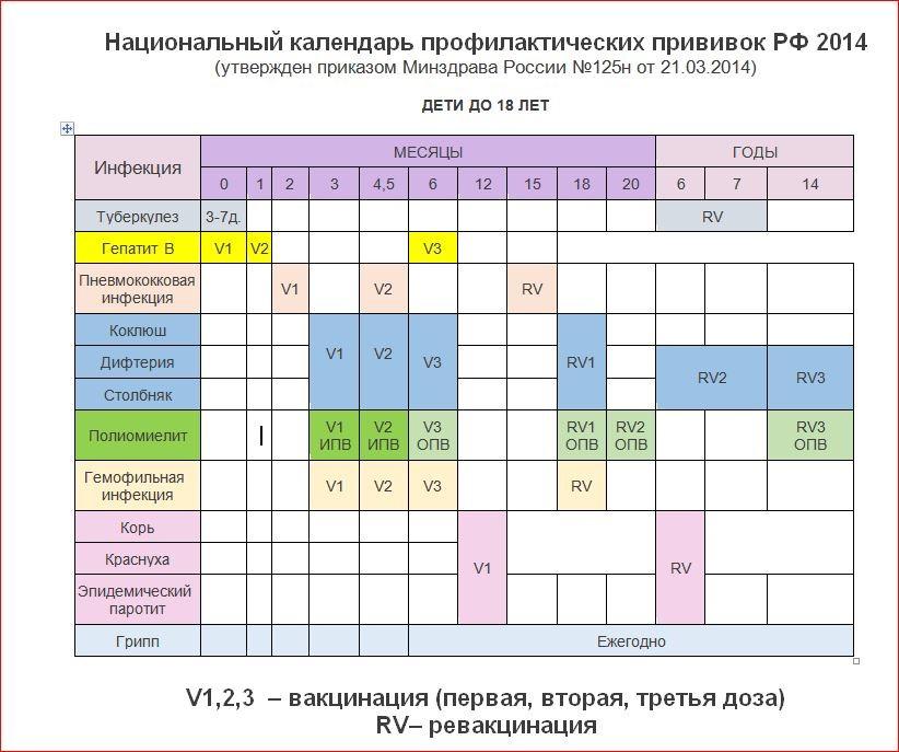 график прививок БЦЖ