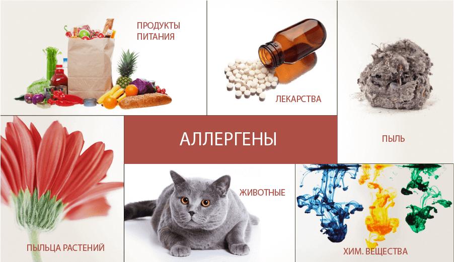 что вызывает аллергию