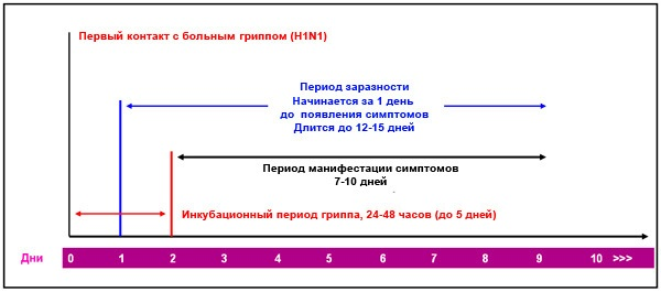 схема грипп